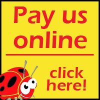 pay-us-online