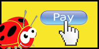 pay-us-online-small